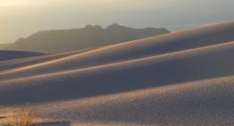 Wassermangel: Mein Körper ist eine Wüste